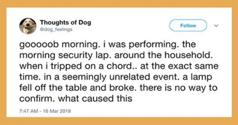 funny tweets about dog thoughts by a twitter user