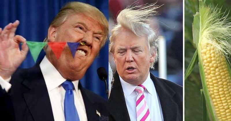 15 Of The Most Tremendous Donald Trump Memes Memebase Funny Memes