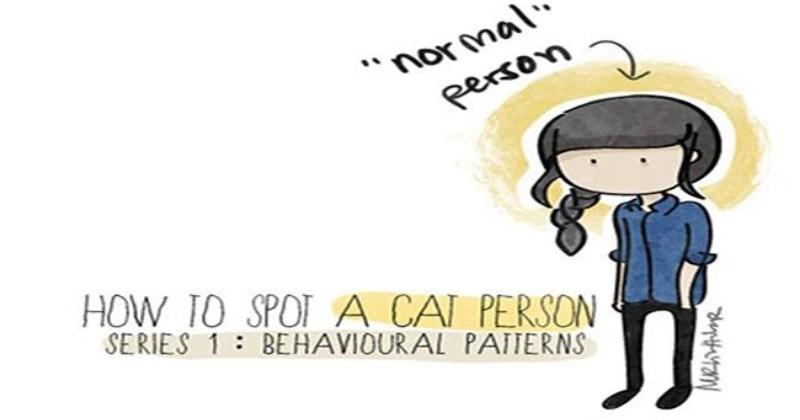 lolcats crazy cat lady adorable cats cute lol cat person Cats funny web comics - 6748677