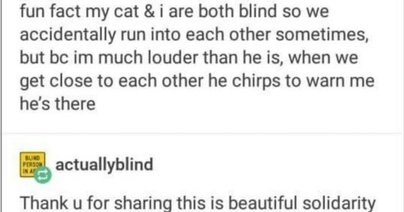 wholesome funny memes animal memes wholesome memes - 7314949