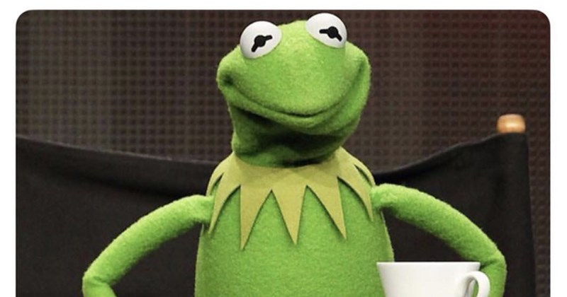 "Meme of Kermit the Frog with the caption, ""Single and ready to get nervous around anyone I find attractive"""