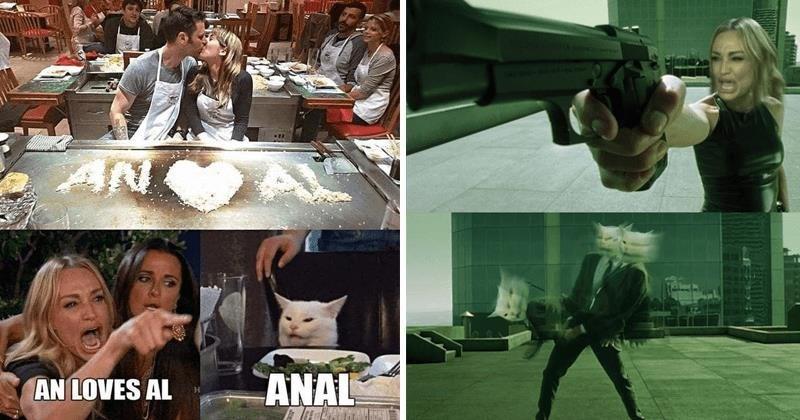 Funny woman yelling at cat memes, matrix meme, anal