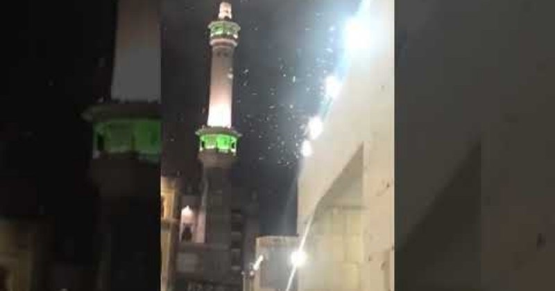 Video Crazy Footage Of Mecca's Grand Mosque Plagued By Swarm Of Locusts