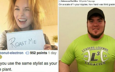 Roasts from /r/roastme that lay on the burn