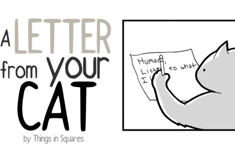 a letter from a cat to his human