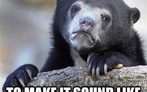 funny bear confessions memes