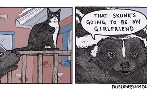 Funny and cute web comics about cats skunks and birds from False Knees.