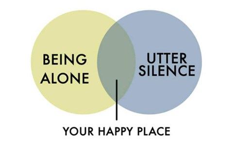 Funny graphs and pie charts about hating people and being alone.