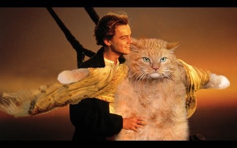 Famous movie scenes improved by editing in some cats.